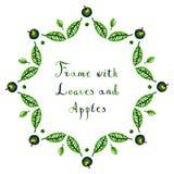 Рамка вектора яблок и листьев акварели Стоковая Фотография