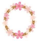 Рамка веревочки розового цветения Стоковая Фотография RF