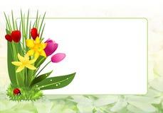 Рамка весны, вектор cdr иллюстрация штока