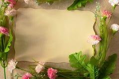 Рамка весны Стоковое Фото