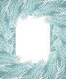 Рамка ветвей рождественской елки белая Ветвь предпосылки Xmas p бесплатная иллюстрация