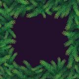 Рамка ветви Xtree Стоковое фото RF