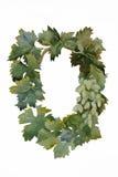 Рамка виноградины лозы от картины акварели листьев и плодоовощей Стоковые Фотографии RF