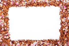 Рамка высушенных одичалых лепестков розы и зерен чая на белой предпосылке, космосе экземпляра для текста Стоковое Фото