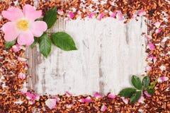 Рамка высушенных одичалых лепестков розы, свежего цветка и зерен чая, космоса экземпляра для текста Стоковое Фото
