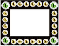 рамка глаз черного кота Стоковые Фотографии RF
