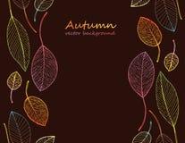 Рамка границы красочных листьев осени Стоковое Фото