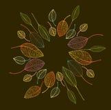 Рамка границы красочных листьев осени Стоковая Фотография