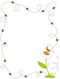 Рамка границы пчелы Стоковое фото RF