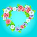 Рамка лета или весны с цветками Стоковая Фотография RF
