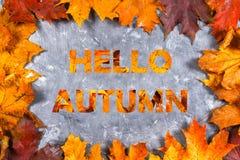 Рамка желтых и оранжевых кленовых листов осени на сером темном бетоне Надпись здравствуйте! осень стоковые фото