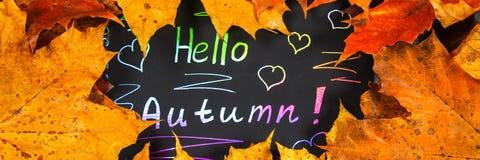 Рамка желтых и оранжевых кленовых листов осени на сером темном бетоне Черная плита с покрашенным текстом Надпись здравствуйте! au стоковое изображение