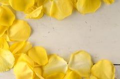 Рамка желтых лепестков розы на деревянной предпосылке Стоковые Изображения RF