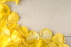 Рамка желтых лепестков розы на деревянной предпосылке Стоковая Фотография