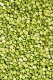 Зеленые чечевицы Стоковая Фотография RF