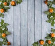 Рамка зеленых листьев и мандаринов на деревянных винтажных досках установьте текст стоковые фото