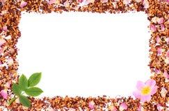 Рамка зерен чая, высушенных одичалых лепестков розы и свежего цветка, копирует космос для текста Стоковая Фотография RF