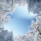 Рамка зимы Стоковые Фотографии RF