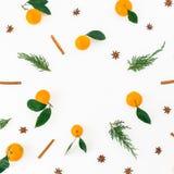 Рамка зимы сделанная цитруса при листья, циннамон и изолированные ветви ели на белой предпосылке Плоское положение Взгляд сверху Стоковое Фото