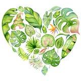 Рамка листьев акварели тропическая Стоковое Изображение RF