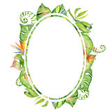 Рамка листьев акварели тропическая Стоковые Фото