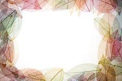 Рамка листьев осени Стоковое фото RF