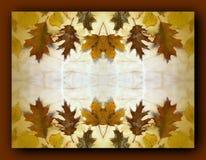 Рамка листьев осени Стоковая Фотография RF