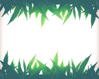 Рамка для фото конопля тату марихуаны на попе