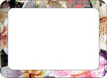 Рамка лилии Стоковая Фотография