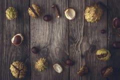 Рамка каштанов на деревянной предпосылке горизонтальной с влиянием фильтра фильма Стоковое Изображение