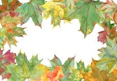 Рамка кленовых листов акварели стоковое изображение rf