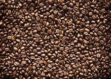 рамка кофе фасолей вполне зажарила в духовке Стоковое Изображение