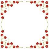 Рамка красных вишен квадратная Стоковое Фото