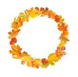 Рамка круга венка сделанная из листьев осени, пшеницы и жолудей иллюстрация штока