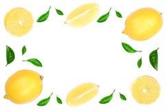 Рамка лимона изолированная на белой предпосылке украшенной с зеленым цветом выходит с космосом для вашего текста, взгляд сверху э Стоковое Изображение