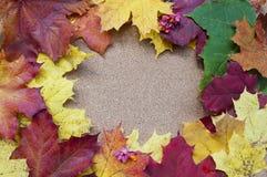Рамка листьев осени Стоковое Фото
