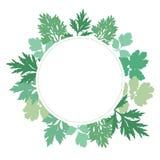 Рамка листьев Стоковое Фото