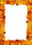 Рамка листьев стоковое изображение rf