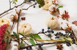 Рамка осени высушенных цветков на белой деревянной предпосылке Стоковые Фотографии RF