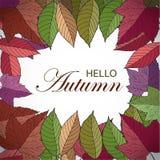 Рамка осени квадратная с листьями нарисованными рукой Здравствуйте! знамя осени иллюстрация штока