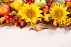 Рамка осени с плодоовощами, тыквами и солнцецветами Стоковая Фотография RF