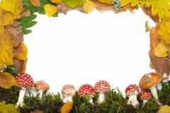 рамка осени Стоковое Фото