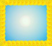 Рамка от желтых цветков хризантемы Стоковая Фотография