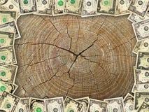 Рамка от долларов на деревянной предпосылке Стоковая Фотография RF