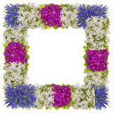 Рамка пасхи весен от цветков Стоковое Изображение RF