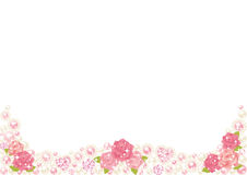Рамка перлы Rose Стоковое Фото