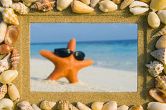 Рамка песка раковины моря и морская звёзда Стоковое Изображение