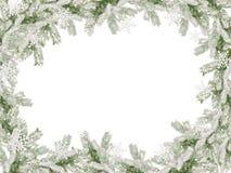 Рамка покрытой снег рождественской елки для рождественской открытки Стоковая Фотография RF