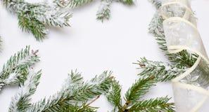 Рамка покрытых снег ветвей дерева Стоковая Фотография RF