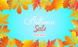 Рамка продажи осени с падая листьями и ягодами рябины Надпись руки Иллюстрация штока